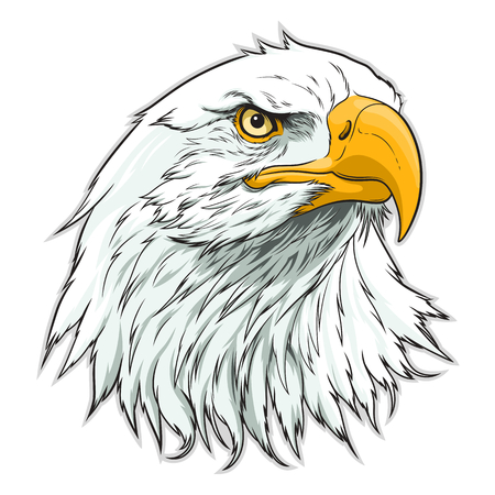 American eagle head Stock Illustratie