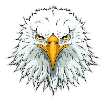 Bald eagle hoofd voorzijde head Vector Illustratie