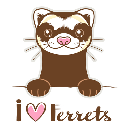 Cute ferret with lettering