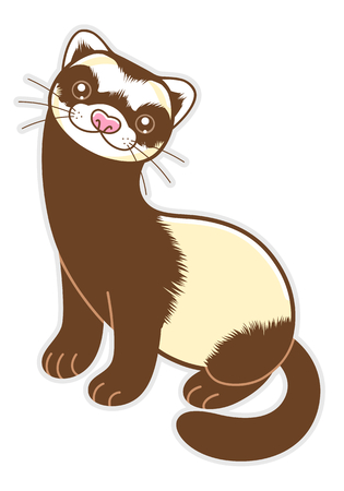 Cute cartoon ferret isolated