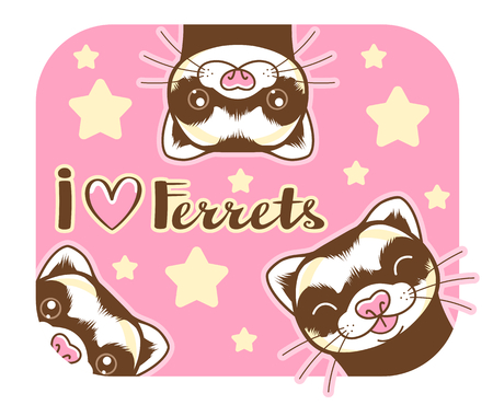 Cute ferrets with lettering on the pink background.