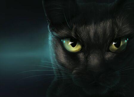 Black cat in darkness Stockfoto