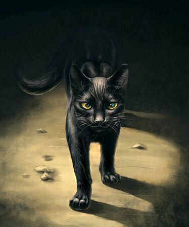 Walking black cat Stockfoto