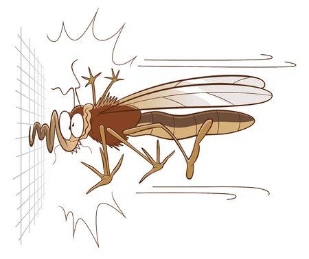Mosquito and mosquito net