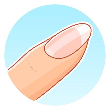 Beautiful nail illustration Stock Illustratie