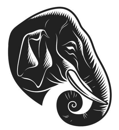 Indian elephant head monochrome