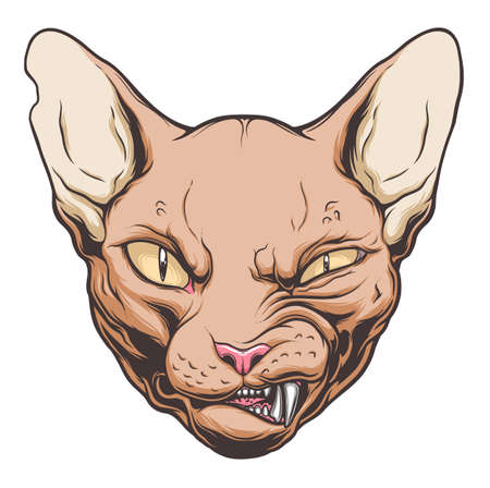 Angry cat portrait on the white background. Vector drawing. Illustration