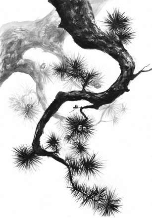 Sumi-e style pine branches black ink painting. Standard-Bild