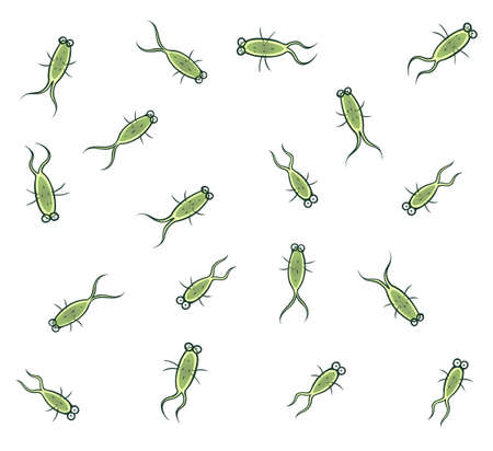 Many cartoon bacteria on the white background