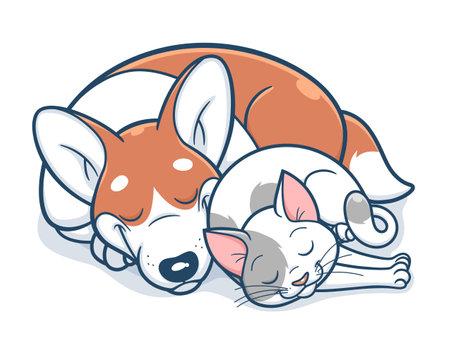 Cute cartoon corgi and cat sleeps. Vector illustration. Illustration