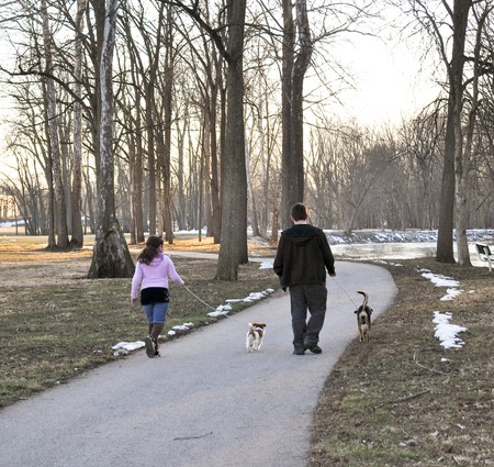 Winter Walk Standard-Bild