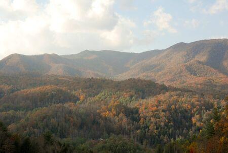 Smoky Moutain View photo