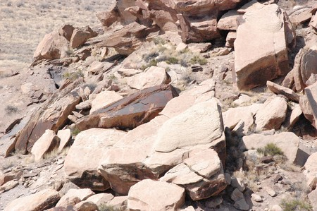 Petrified Forest - Newspaper Rock Petroglyphs