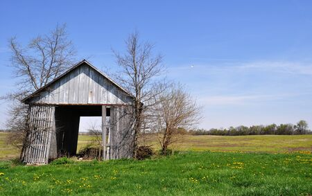 tipping: Barn tipping background
