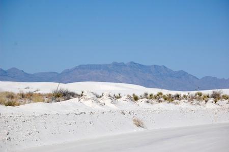 White Sands road photo