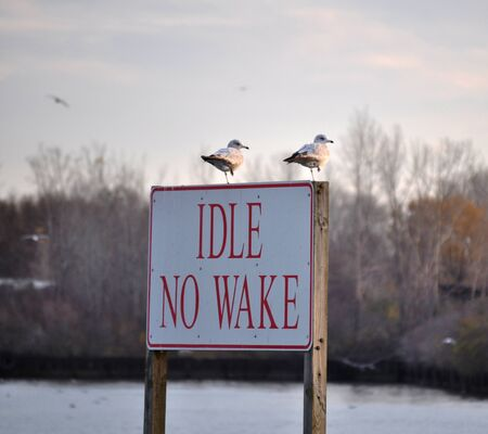 Sign Idle No Wake Banco de Imagens
