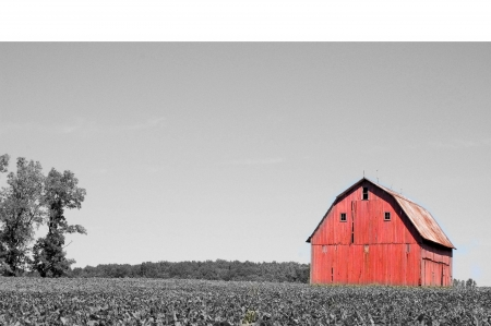 barn black and white: Red Black and White Barn