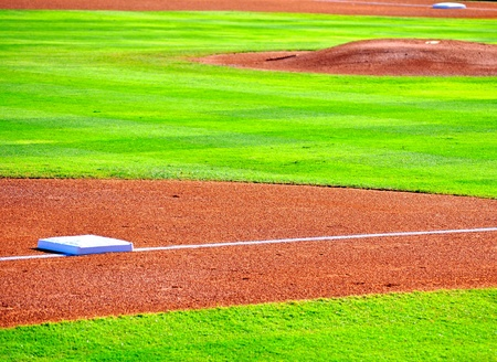 bases: Bases and pitchers mound
