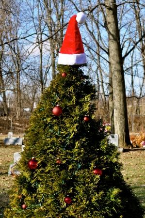 gravesite christmas tree stock photo 15253689