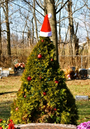 gravesite christmas tree stock photo 15714451