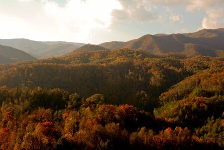 asheville: Asheville in the fall