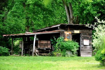 shack: Rabbit Hash Shack