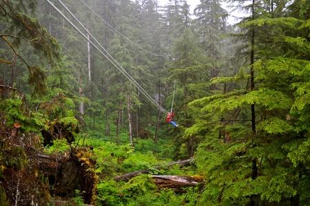 Man Ziplines through forest photo