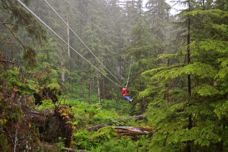 Zip lining in the middle of a forest photo