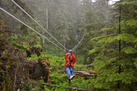 Zip Lining Through Ketchikan 版權商用圖片