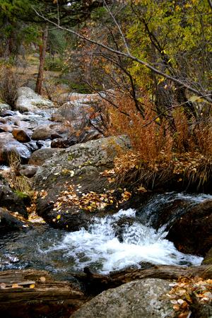 록키 마운틴 국립 공원, 미국