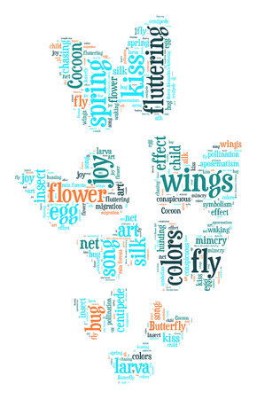 Butterfly word cloud photo