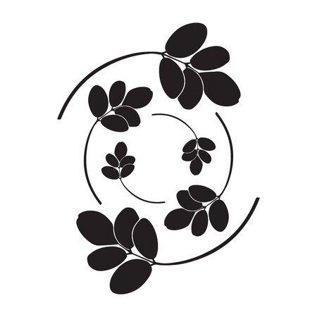 moringa leaves vector illustration on white background