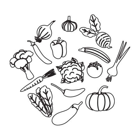 line icon vegetable design vector illustration