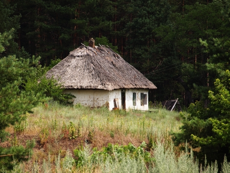 Abandoned house with thatched roof in the woods
