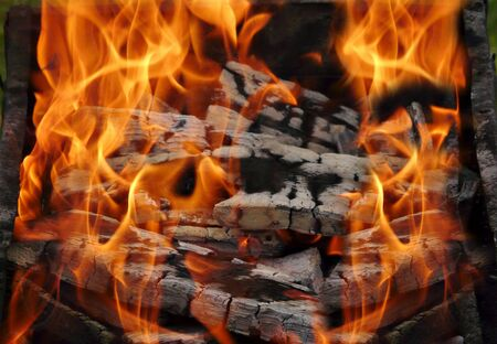 Closeup of the brazier with burning fire woods Stock Photo - 5185719