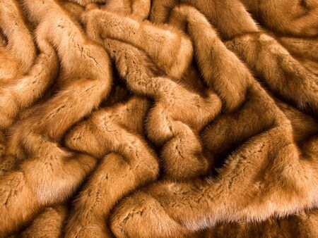 Closeup of the luxury brown mink fur texture. Stock Photo