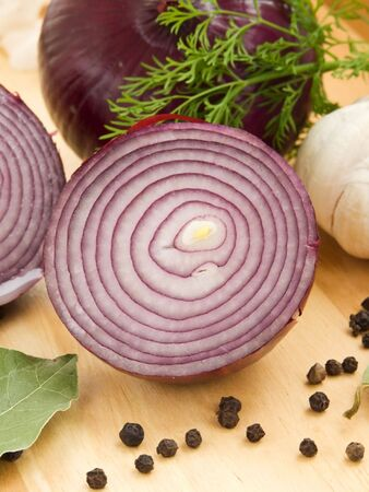 Lilac onion, fennel, laurel, black pepper and garlic. Shallow dof.