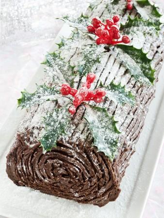 noel chocolat: B�che de la province de No�l au chocolat maison. DDL peu profond. Banque d'images