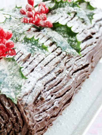 yule log: Homemade christmas chocolate yule log. Shallow dof.