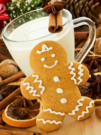 Spiced milk and homemade gingerbread cookies for Santa. Shallow dof. photo