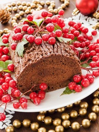 yule log: Homemade christmas chocolate yule log with wild berries. Shallow dof.