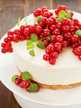 Sour cream cheesecake with red currants and mint. Shallow dof. photo