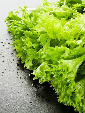 Baby green lettuce on the black background. Shallow dof. photo