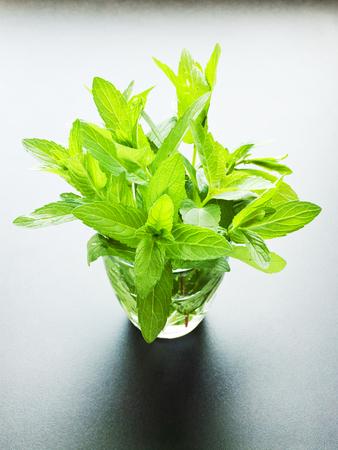Fresh mint in glass. Shallow dof.