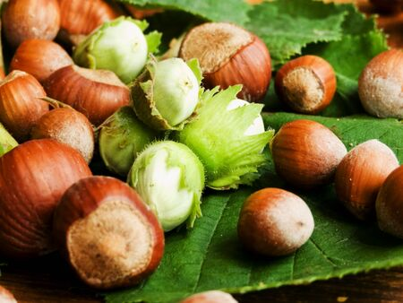 Wild hazelnuts on wooden background. Shallow dof.