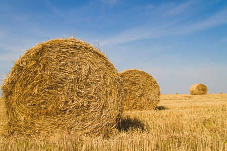 rural skyline: sheaf of hay in the field with blue sky and clouds Stock Photo