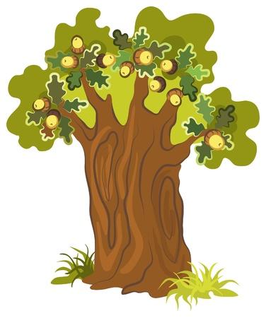 Oak tree. Scenic tree for your design Vectores
