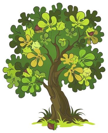 Castaño. Árbol escénico para su diseño Ilustración de vector