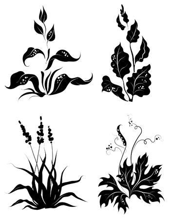 Set of variable silhouettes plants for design