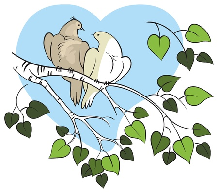 The love birds Vector